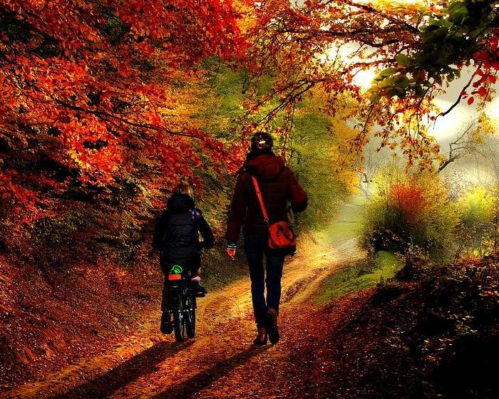 Nie dać się jesieni – sposoby na zwiększenie odporności u schyłku roku