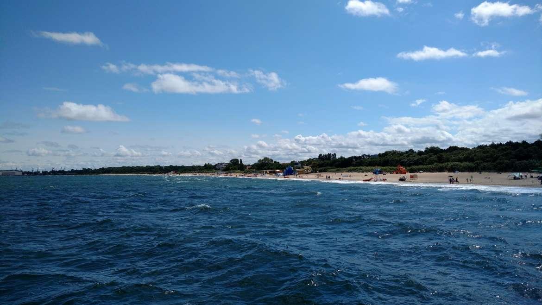 Aktywne wakacje nad morzem: dlaczego sinice są zmorą dla wczasowiczów?